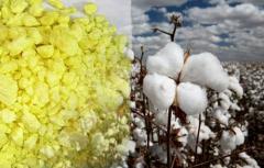 Предлагаем брокерские услуги по экспорту нефтехимии, текстиля из Туркменистана